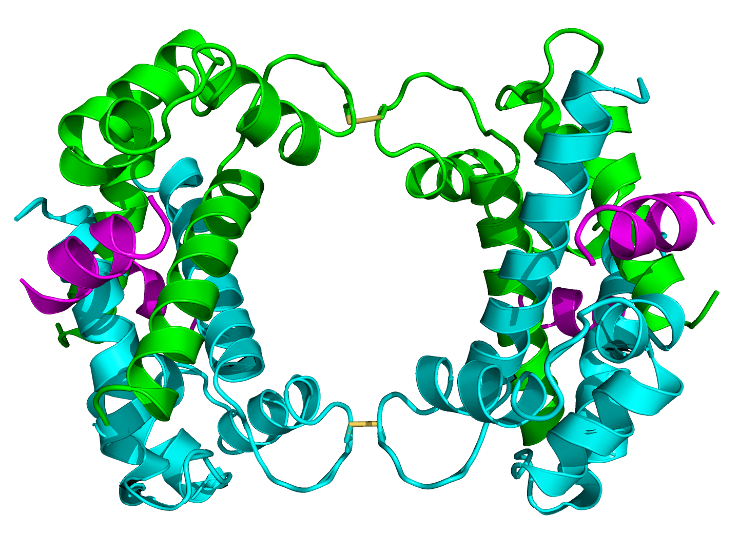 p11 protein
