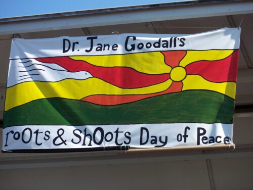Dr Jane Goodall's Roots & Shoots Day of Peace